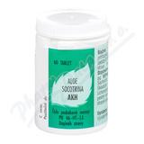 AKH Aloe Socotrina tbl. 60