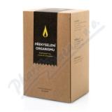 AROMATICA Bylinný čaj Překyselení organizmu 20x2g