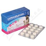 Capraverum Dog puppies-lactating dogs tbl. 30