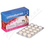 Capraverum Dog imuno-activ tbl. 30