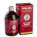 Hyalgel Collagen MAXX 500 ml VIŠEŇ vánoční balení 2020