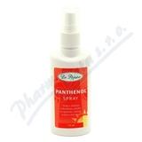 Panthenol spray 110ml Dr. Popov
