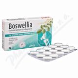 Boswellia s chondroitinem a kolagenem tbl. 30